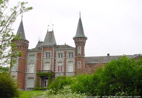 Vinalmont Castle WANZE picture e