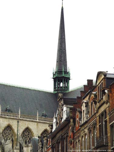 Église Saint-Pierre LEUVEN / LOUVAIN photo