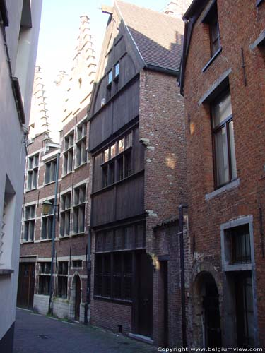 Wooden house ANTWERP 1 / ANTWERP picture
