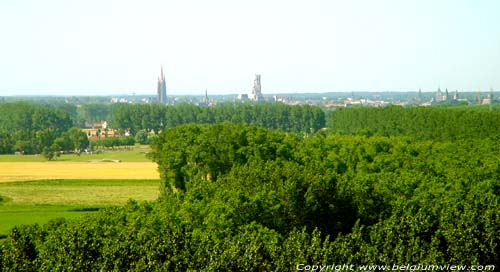 View on Bruges DAMME picture