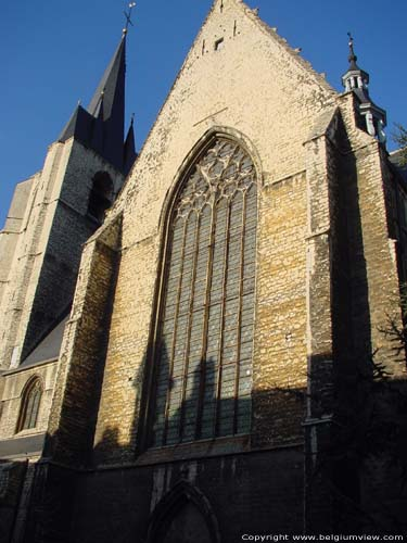 Saint John the Baptist and Evangelist church MECHELEN picture