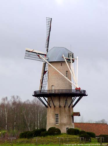 Rare Rest Mill ZANDHOVEN picture