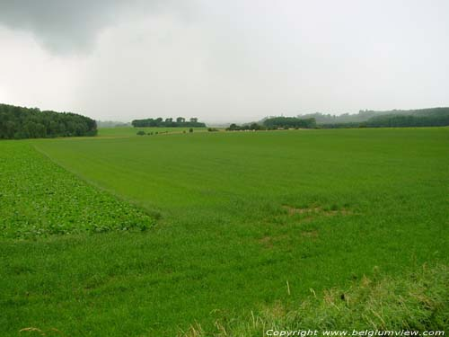 Landschap CINEY foto