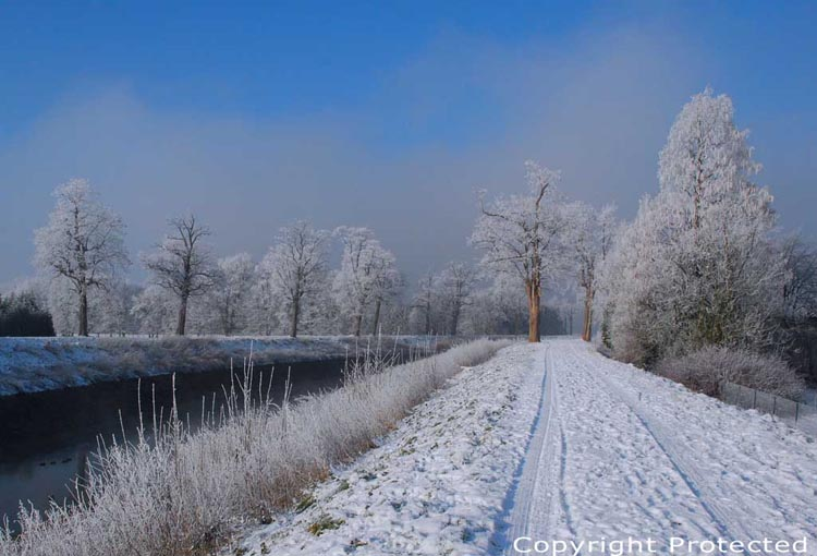 Snowy landscape of the Dyle river MECHELEN picture