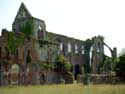 Ruins of Aulne's abbey (in Gozee) THUIN picture: