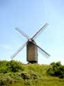 South dunes mill - South abbey mill KOKSIJDE picture: