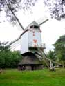 Moulin a vent de Sevens OVERPELT photo: